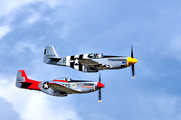 P51 and F51 Mustangs - 2010-09-05-BD-15104844